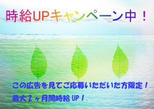 株式会社綜合キャリアオプション宇都宮の画像・写真