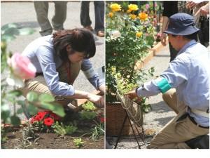 第一園芸株式会社の画像・写真