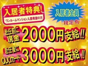 株式会社新日本の画像・写真