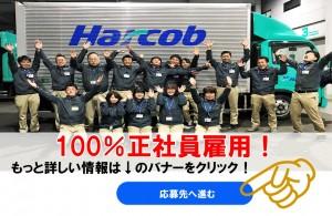 ハーコブ株式会社の画像・写真