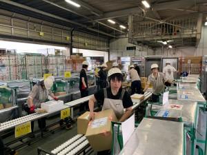 ヤマト運輸株式会社の画像・写真